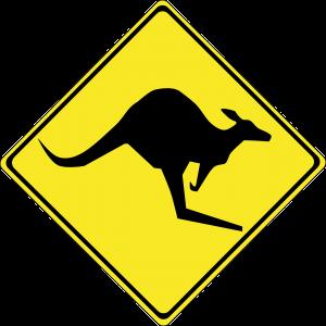 kangaroo-148276_1280